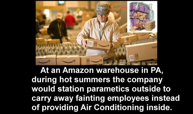 Summer at Amazon